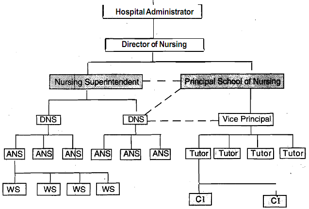 1251_Types of Organization Chart.png