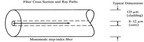 1304_Fiber cross section and ray paths.png