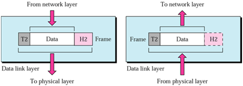 1637_Physical Layer Responsibilities of osi model.png