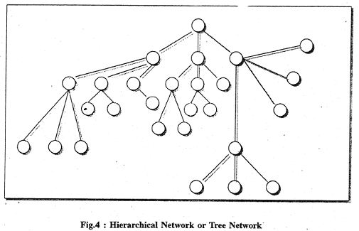 1732_network of library2.png