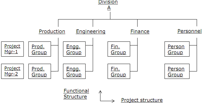 pure project structure the pure project organization An organizational structure the other two are functional and project structure matrix management organizations are not of a pure hierarchical structure.