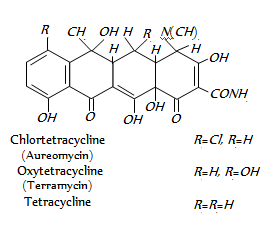 1786_Tetracyclines.png