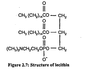 1907_lecithin.png