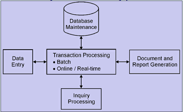 transaction processing systems  assignment help  management       transaction processing systems png