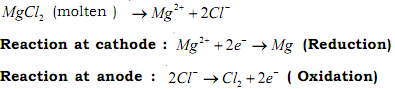 2050_Electrolytic reduction of magnesium chloride.png