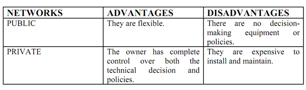 2172_advantages and disadvantages of public and private network table.png