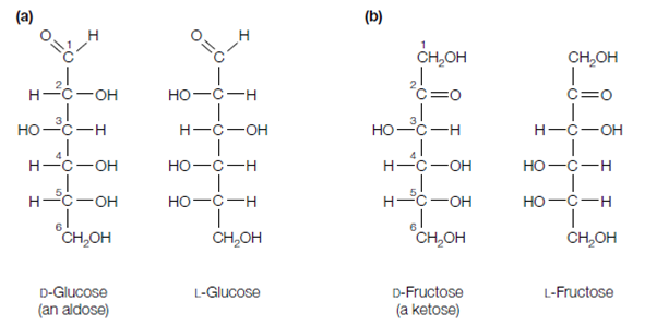 DFRUCTOSE and DGLUCOSE ASSAY PROCEDURE KFRUGL 0217 110 Assays per Kit or  Dfructose gL If the sample has been diluted during preparation the result must be