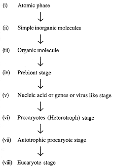 2346_biochemical origin of life1.png