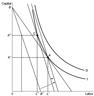 2392_How it can be possible for increases in the minimum wage.png