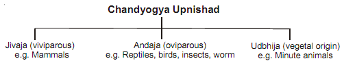 2416_biology in ancient india.png