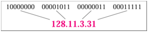25_Show the IP Address Representation1.png