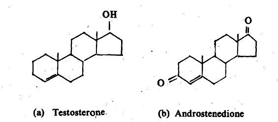 352_Synthesis of Hormones.png