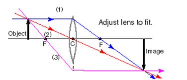 36_Ray Diagrams for Lenses 2.png