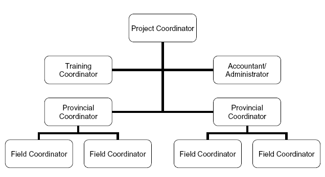 385_organizational structure.png