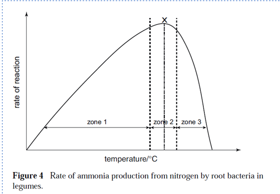 728_Rate of Conversion of Atmospheric Nitrogen into Ammonia.png